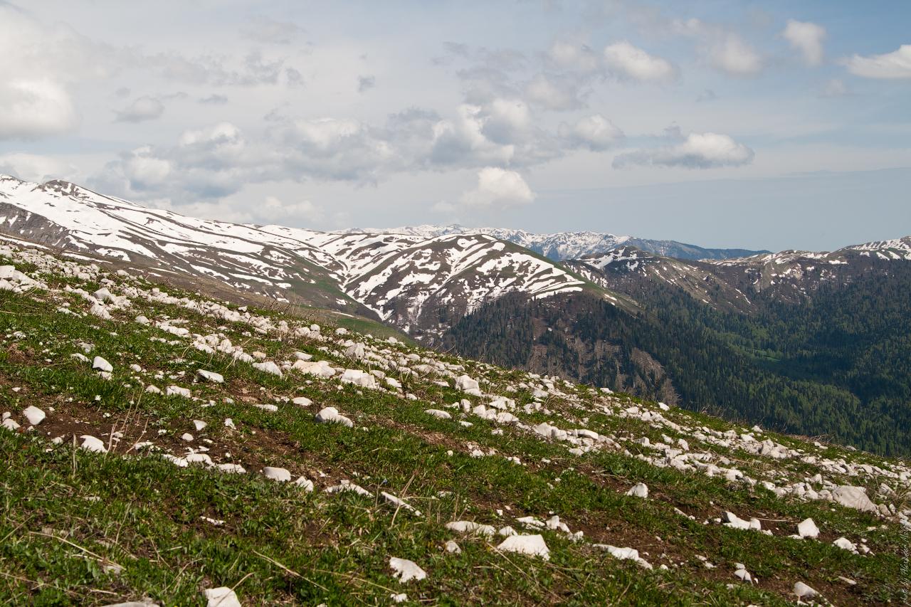 Абхазия Перевал10